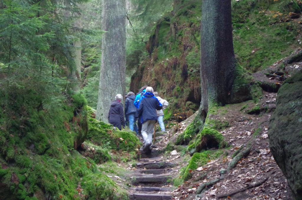 Wanderer auf mystischem Weg